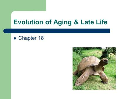 Evolution of Aging & Late Life Chapter 18. Evolutionary Definition of Aging Sustained age-specific decline of fitness related characteristics not due.