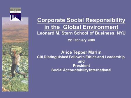 Corporate Social Responsibility in the Global Environment Leonard M. Stern School of Business, NYU 22 February 2008 Alice Tepper Marlin Citi Distinguished.