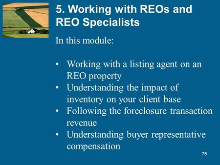 75 5. Working with REOs and REO Specialists In this module: Working with a listing agent on an REO property Understanding the impact of inventory on your.