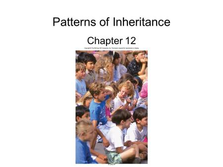 Patterns of Inheritance Chapter 12. 2 Mystery of heredity Before the 20 th century, 2 concepts were the basis for ideas about heredity –Heredity occurs.