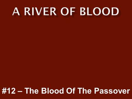 #12 – The Blood Of The Passover.  We must be prepared for the coming judgment and wrath of God.  Only those protected by the blood of the Lamb will.