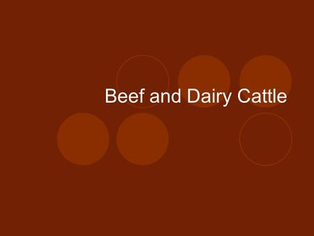 Beef and Dairy Cattle. Objectives: 1.Label the parts of cattle 2.Define key terms associated with cattle 3.Detail the history of cattle 4.Explain the.
