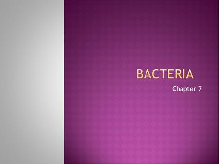 Bacteria Chapter 7.
