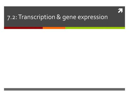  7.2: Transcription & gene expression.  Gene expression Proteins regulate the expression of genes. Prokaryotes express genes in response to their environment.