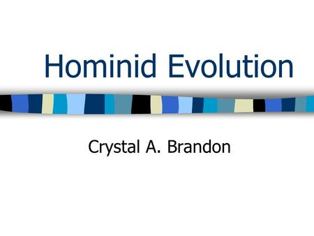 Hominid Evolution Crystal A. Brandon. Evolutionary Relationship Amongst Hominid Species.