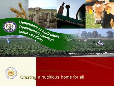 Creating a nutritious home for all. PROVINCIAL CONSULTATIONS: WESTERN CAPE PROVINCE.