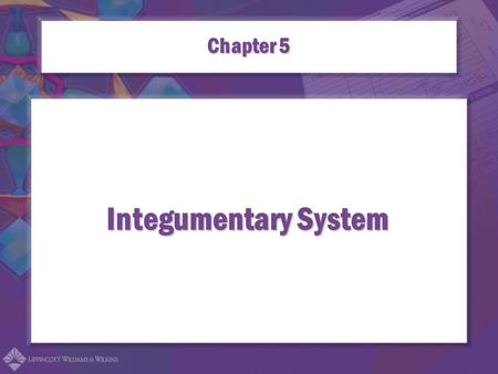 Integumentary System Chapter 5. Combining Forms for the Integumentary System adip/o lip/o steat/o dermo/o dermat/o cutane/o.