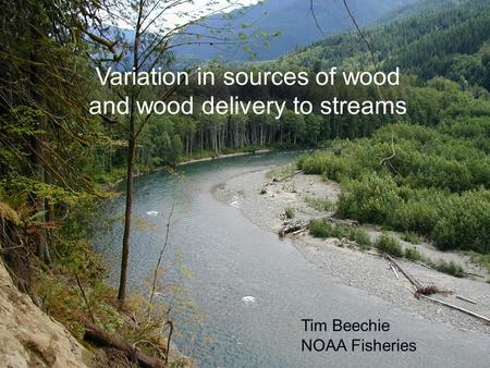 Variation in sources of wood and wood delivery to streams Tim Beechie NOAA Fisheries.