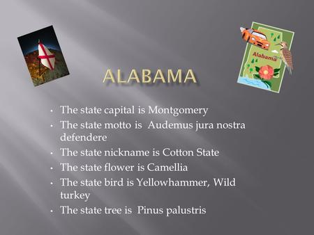 The state capital is Montgomery The state motto is Audemus jura nostra defendere The state nickname is Cotton State The state flower is Camellia The state.