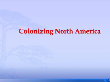 Colonizing North America