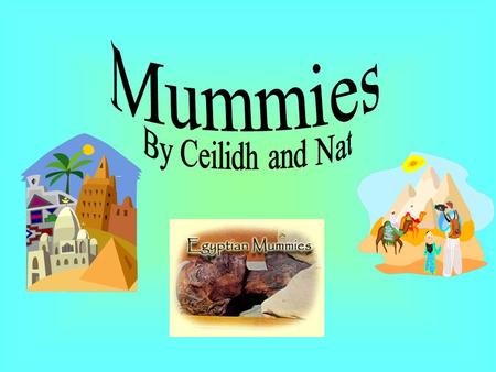 . The process of mummifying a body took almost up to seventy days.The Egyptians believed that mummification was a must have for afterlife. People were.