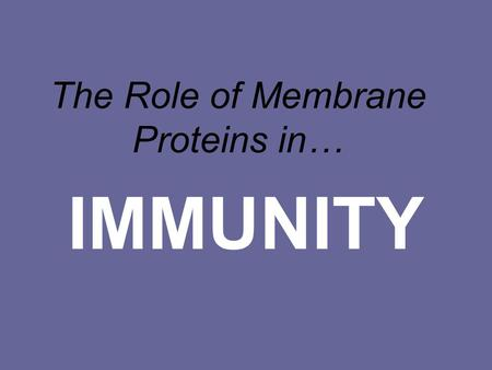 The Role of Membrane Proteins in… IMMUNITY. What is an antigen? An ANTIGEN is anything that stimulates the production of antibodies by the immune system.