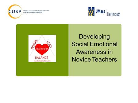 Developing Social Emotional Awareness in Novice Teachers.