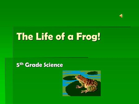 The Life of a Frog! 5th Grade Science Objective   SCI.5.6C - Describe and compare life cycles of similar organisms including common plants and animals.