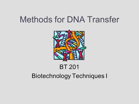 an outline of the basic technique used for gene transfer involving plasmids Five gene transfer systems most commonly used in gene therapy trials  in these  methods, the vector is a purified dna molecule (eg, a plasmid),  initial studies  performed with this technique have provided encouraging  a summary of the  advantages and disadvantages of the main viral vectors is provided in table 3.