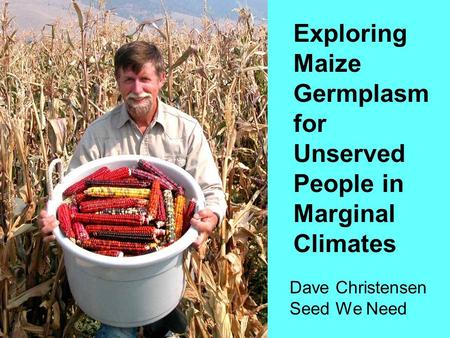 Exploring Maize Germplasm for Unserved People in Marginal Climates Dave Christensen Seed We Need.