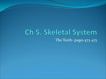 Ch 5. Skeletal System The Teeth- pages 473-475.