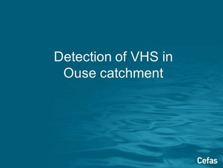 Detection of VHS in Ouse catchment. Background Nidderdale Trout reported mortalities to Cefas on 17 th May Virus isolated from samples taken by Cefas.