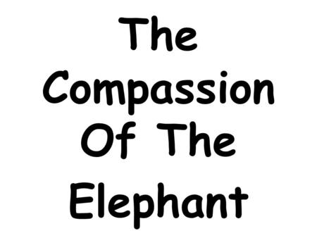 The Compassion Of The Elephant. Once upon a time, there was a forest where there were many animals. An elephant used to live with them.
