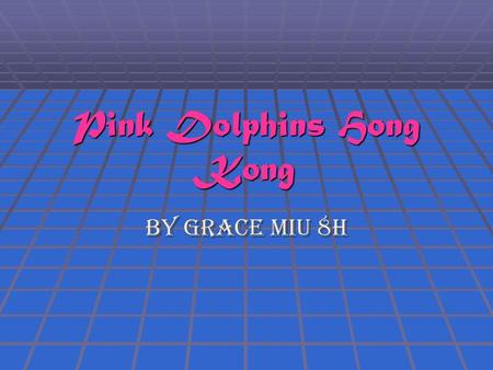 Pink Dolphins Hong Kong By Grace Miu 8H. What are pink dolphins?  The adult dolphin is usually white or grey in colour.  The Pink Dolphin along the.