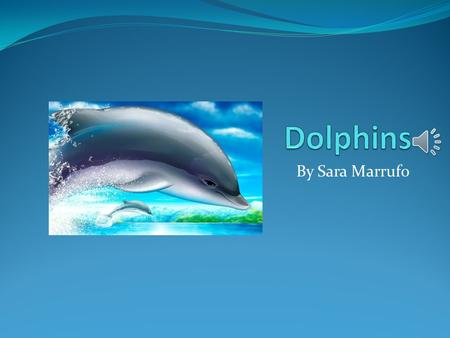 By Sara Marrufo Body Dolphins are sea animals. There body can get up to 30 feet long. Dolphins use there tail flukes up and down to swim. Dolphins use.