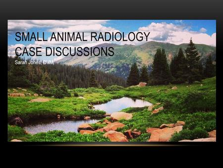SMALL ANIMAL RADIOLOGY CASE DISCUSSIONS Sarah Jones, DVM.
