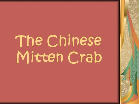 The Chinese Mitten Crab. What is the Mitten Crab? The Chinese mitten crab is found in lakes in Korea or China where they can live as long as five years,