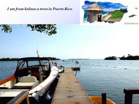 I am from Salinas a town in Puerto Rico.. Salinas is very friendly place to vacation because most of the people are bilingual in English & Spanish.