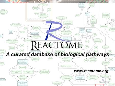 Www.reactome.org A curated database of biological pathways.