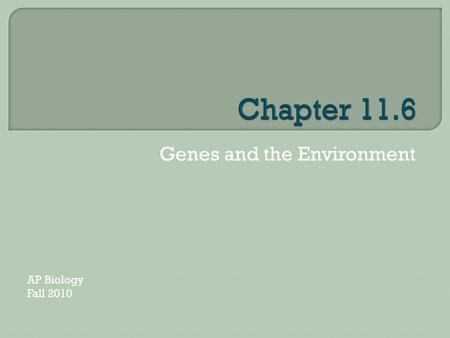 Genes and the Environment AP Biology Fall 2010.  The environment contributes to variations in gene expression amoung individuals in a population.