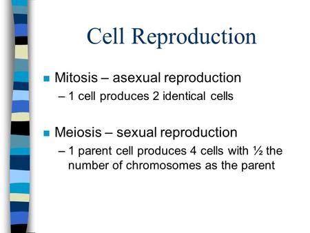 Cell Reproduction n Mitosis – asexual reproduction –1 cell produces 2 identical cells n Meiosis – sexual reproduction –1 parent cell produces 4 cells with.