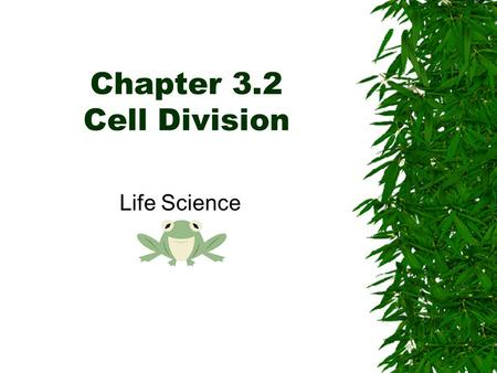 Chapter 3.2 Cell Division Life Science. What causes organisms to grow??  Many organisms start as one cell…what happens to these cells? –Cells divide!!