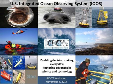 U.S. Integrated Ocean Observing System (IOOS) Enabling decision making every day; Fostering advances in science and technology BIO TT Workshop November.