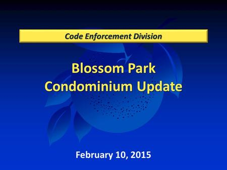 Blossom Park Condominium Update Code Enforcement Division February 10, 2015.