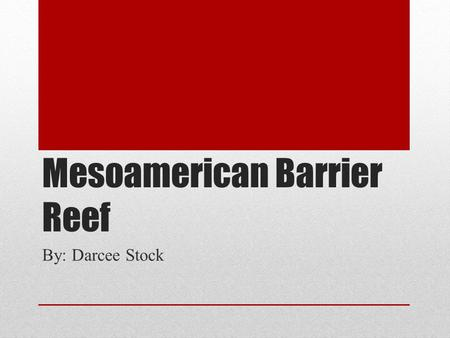 Mesoamerican Barrier Reef By: Darcee Stock. What is overfishing? As defined by the New Oxford American Dictionary, overfishing is the depletion of the.