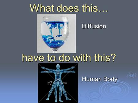 What does this… have to do with this? Diffusion Human Body.