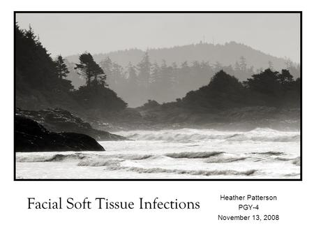 Facial Soft Tissue Infections Heather Patterson PGY-4 November 13, 2008.