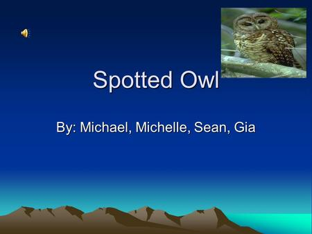 Spotted Owl By: Michael, Michelle, Sean, Gia Spotted Owl The spotted owl is dark in color and has a round head The spotted owl is nocturnal The spotted.