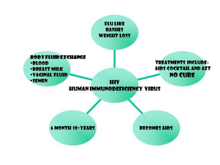 HIV Human Immunodeficiency Virus Flu Like Rashes Weight Loss Treatments include- AIDS Cocktail and AZT NO CURE Becomes AIDS 6 month 10+years Body fluid.