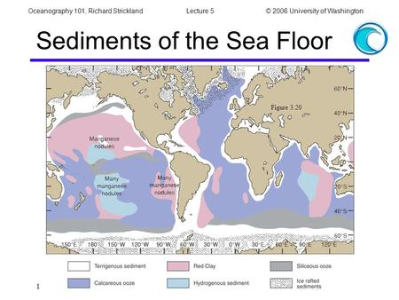 Oceanography 101, Richard StricklandLecture 5© 2006 University of Washington 1 Sediments of the Sea Floor Figure 3.20.