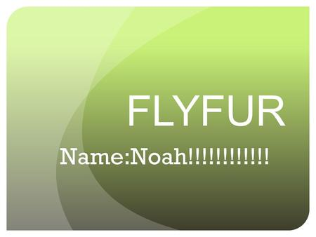 FLYFUR Name:Noah!!!!!!!!!!!! Habitat of Your Animal Location-Arctic, Pacific, Atlantic, and Indian covering 3 Quarters of the earth!!!!!! Characteristics-