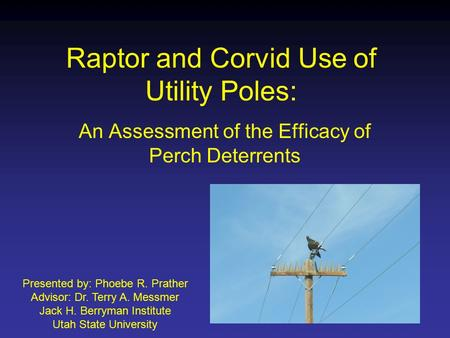 Raptor and Corvid Use of Utility Poles: