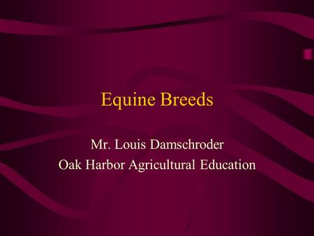 Equine Breeds Mr. Louis Damschroder Oak Harbor Agricultural Education.