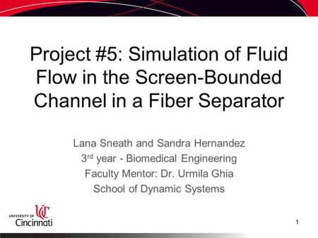 Project #5: Simulation of Fluid Flow in the Screen-Bounded Channel in a Fiber Separator Lana Sneath and Sandra Hernandez 3 rd year - Biomedical Engineering.