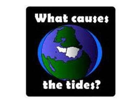 Tides are the periodic rise and fall of the water level in the oceans and other large bodies of water.