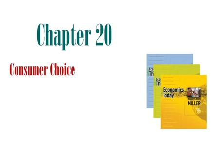 Chapter 20 Consumer Choice.