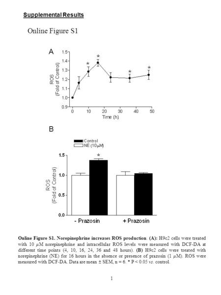 Supplemental Results Online Figure S1. Norepinephrine increases ROS production. (A): H9c2 cells were treated with 10  M norepinephrine and intracellular.