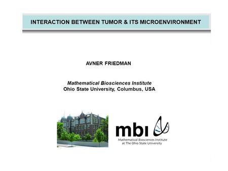 INTERACTION BETWEEN TUMOR & ITS MICROENVIRONMENT AVNER FRIEDMAN Mathematical Biosciences Institute Ohio State University, Columbus, USA.
