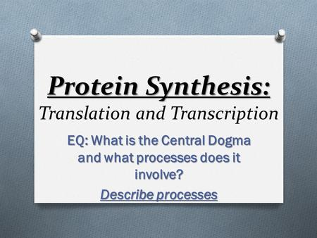 Protein Synthesis: Protein Synthesis: Translation and Transcription EQ: What is the Central Dogma and what processes does it involve? Describe processes.