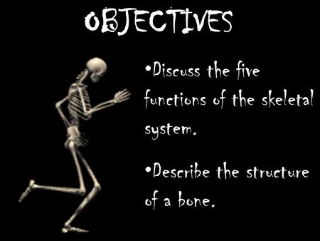 OBJECTIVES Discuss the five functions of the skeletal system. Describe the structure of a bone.